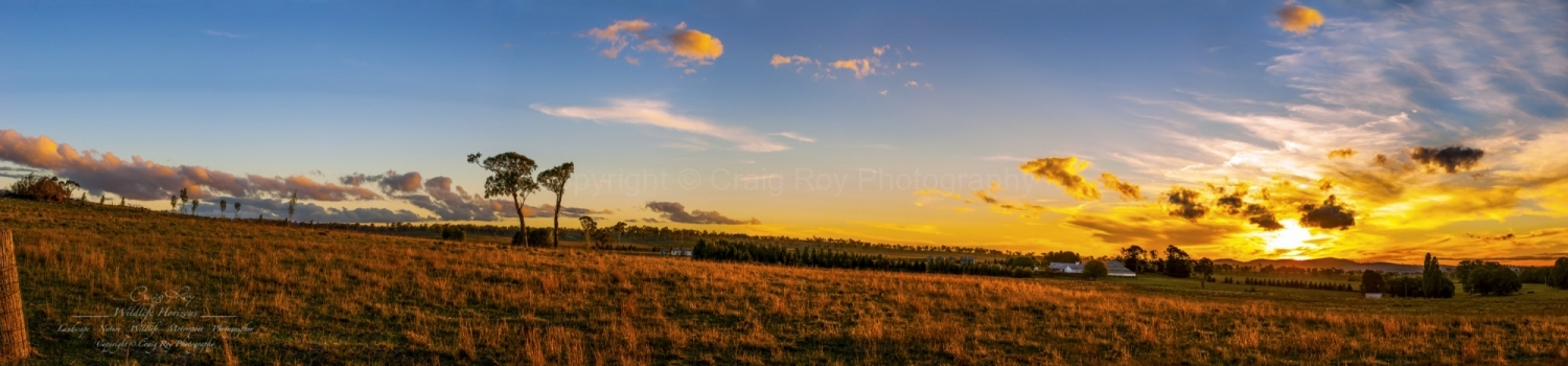 Deeargee Woolshed Sunset Panorama