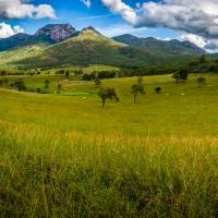 Mount Walsh Valley Panorama