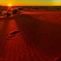 Tracks, Desert Sands, Outback Australia